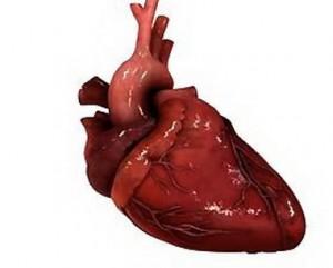 Угнетение функции сердца