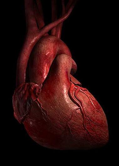 Внезапная остановка сердца